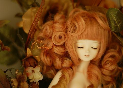Yukari: Bluefairy white sleeping sarang